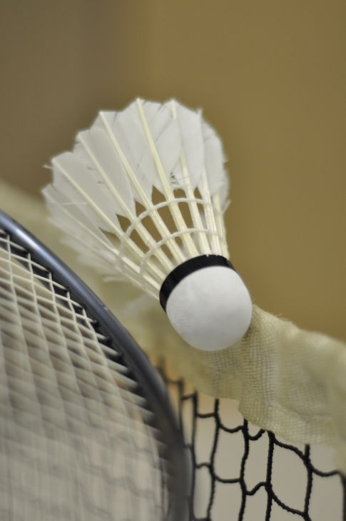 Badminton Ball 005